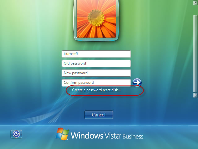 Click Create a password reset disk